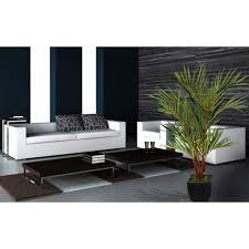 Palm Tree Decor For Living Room Laura Ashley Home Lipstick Palm Tree In Planter Reviews Wayfair