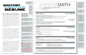 The Anatomy Of A Really Good Resume A Good Resume Example