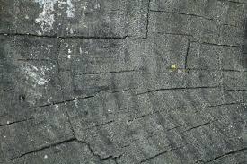 black painted wood texture. Painted Wood Textures Black Texture N