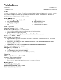 Developer Resume Examples