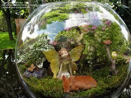 Small Picture Fairy Garden Design Ideas fairy garden house ideas creating a