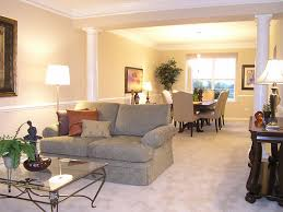 Image of: Long Narrow Living Dining Room Decoration