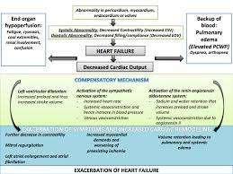 Pathophysiology Of Chf Congestive Heart Failure Pathophysiology Wikidoc