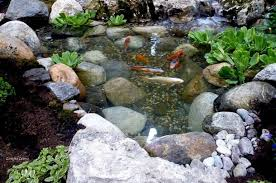 Small Picture Small Garden Ponds With Waterfalls Attractive Small Patio Design