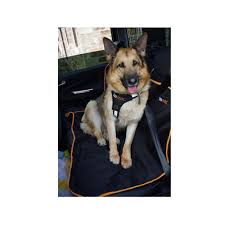 rear car seat cover protector for dogs