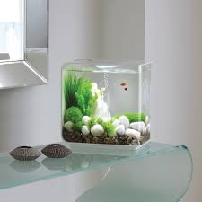 Funny Fish Tank Decorations Modern Fishtank Fish Aquarium Design Built In Wall Mount Aquarium