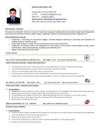 Purchasing Manager Resume Procurement Executive Objective