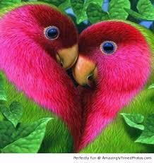 Αποτέλεσμα εικόνας για φιλι μαβι