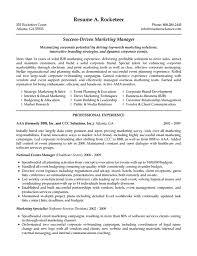Marketing Executive Resume Sample Sales Resume Skills Gerhard Leixl Tk Management Samples Templates 12