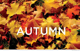 amazing autumn wallpapers quotes images hd