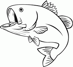 Small Picture 8 Pics Of Jumping Fish Coloring Pages Jumping Bass Fish Drawings