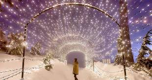 12 Magical Places In Vancouver To See Christmas Lights This ...