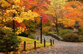 Celebrate autumn: 8 fun ideas for your family | Seattle's Child