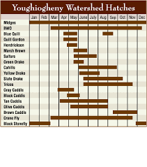 30 Clean South Holston River Hatch Chart