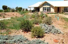 Small Picture Best Ideas About Designing Dry Garden Dry Garden Palos Verdes
