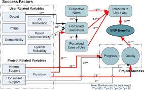 Analyzing Enterprise Resource Planning System Implementation