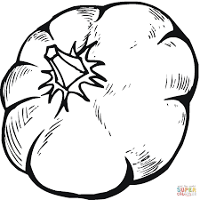 Small Picture Pumpkins coloring pages Free Coloring Pages