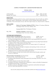 Veterinarian Resume Examples