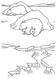 Small Picture Polar bear coloring pages sleeping ColoringStar