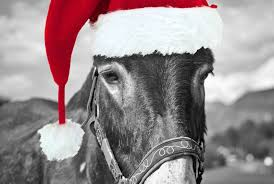 Who doesn't love christmas music? Dominick The Donkey The Christmas Song S Wild History Mental Floss
