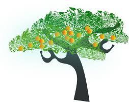 orange clipart png. big image (png) orange clipart png