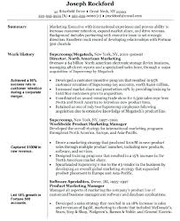 Marketing Manager Resume Objective Career Director Mmventures Co