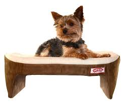 amazoncom  lap cozy pet bed for small dogs cats and other small