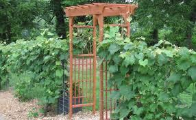woodworking diy garden arbors plans pdf