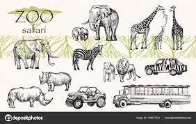 Sketched Animals Vector Hand Drawn Sketched Animal Set