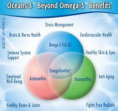 com garden of life ultra pure epa dha omega 3 fish oil oceans 3 beyond omega 3 supplement with antioxidants 60 softgels health personal care