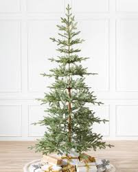 photo courtesy of terrain spare evergreen tree where you can see trunk