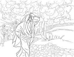 Jezus Vervloekt De Vijgenboom Kleurplaat Gratis Kleurplaten Printen