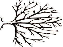 bare apple tree clipart. black and white bare tree clipart | panda - free . apple