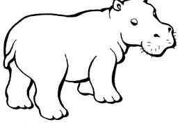 Small Picture Home Baby Animal Coloring Pages Cute Baby Hippo Coloring Pages
