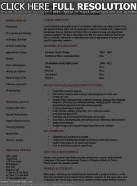 Great Resume Live Contemporary Professional Resume Example Ideas