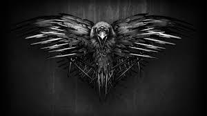 raven wallpapers x1v49j6 2560x1440