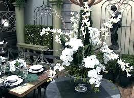 trees and trends furniture. Trees And Trends Patio Furniture Good N  Black White . E