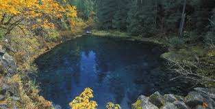Tamolitch blue pool Diving Previous Next Mckenzie River Tamolitch Falls Tamolitch Blue Pool Visitmckenzierivercom