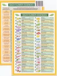 Bach Flower Remedies Chart Bach Flower Remedies Mini Chart