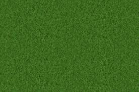 Free Images plant field lawn meadow texture pattern green