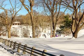 Snow in Central Park - Myrna Gordon-Covelli on Fstoppers
