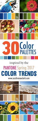 Best 25+ Color palettes ideas on Pinterest | Color pallets, Color schemes  colour palettes and Bedroom color schemes