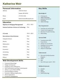Resume Examples Of A Profile Manual Testing Cv Skills Job Search