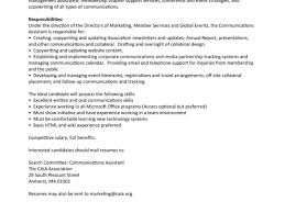 Resume Sle Summary For With No Experience Real Estate Agenteee