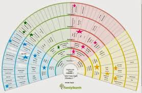 Genealogy Fan Chart Excel Lamasa Jasonkellyphoto Co