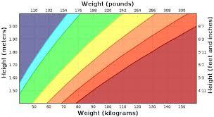 Foodsel Body Mass Index