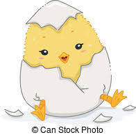 chicken hatching clipart. Modren Hatching Chick Hatching  Illustration Featuring A Cute In The Throughout Chicken Clipart O