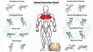 Chest Chart Gym Chest Work Out For Men Chest Workouts Gym Workout Chart