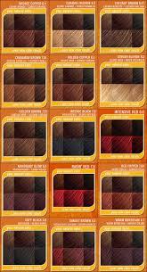 Argan Oil Color Chart Argan Oil Permanent Hair Color Chart Lajoshrich Com