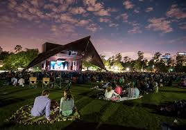 do this tonight picnic at miller outdoor theatre